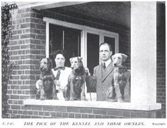 1908 Airedales photo 1908_Airedales.jpg