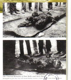 The charred bodies of Steve Hart and Dan Kelly Ned Kelly, History Of Photography, Passed Away, Historical Photos, Bodies, Past, Hero, Australia, Historical Pictures