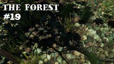The Forest #19 [Facecam] - Nahrung beschaffen - Let's Play The Forest