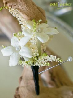 STEPHANOTIS  Meaning: Marital happiness  Best For: Bouquets and arrangements  Scent: Very fragrant  In Season: Year-round  Price Range: Moderate  Floral Fact: These trumpet-shape blossoms are traditional bridal flowers, no doubt due to their meaning.