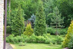 Выбор места посадки деревьев и кустарников в первую очередь определяется ролью, которую они будут играть на участке. Высаженные по периметру участка деревья отделяют его от остального мира, создавая атмосферу завершенности и уюта