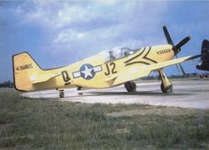 """Forums / USAAF / USN Library / P-51 """"Hacks"""" - Axis and Allies Paintworks"""