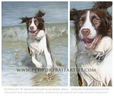 springer spaniel pet portrait - amazing paintings!