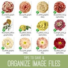 tutorial-650x650_organize_files_graphicsfairy