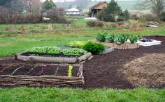 How to Build a Variety of Raised Beds