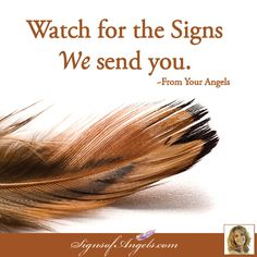 Signs come as feathers, coins, numbers and so much more. Stay in the present moment to see what the Angels are sending your attention to. ~Karen Borga