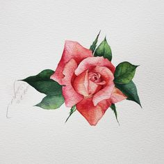 Likes, 18 Comments - 🎗Today is a gift! Gold Paper, Flower Power, Illustration Art, Watercolor, Photo And Video, Flowers, Landscapes, Instagram, Cards