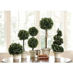 "Ballard- Boxwood Topiaries are classic.  Dimensions:  Low Ball: 20""H X 8 1/2"" Diameter  Tall Ball: 30""H X 12"" Diameter  Dome: 13""H X 10"" Diameter  Double Ball: 22""H X 9"" Diameter  Spiral: 22""H X 9"" Diameter  Pot: 4 1/2""H X 6 3/4"" Diameter  Could do a group of these on your large tray on your central ottoman"