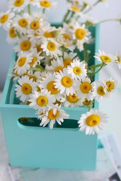 Robin's egg blue box with small daisies....how cheery.
