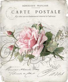 vintage rose carte postale digital collage p1022