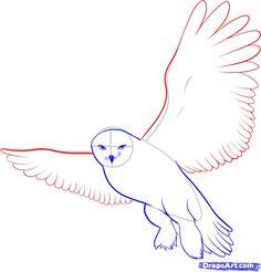 How To Draw A Snowy Owl Step 7