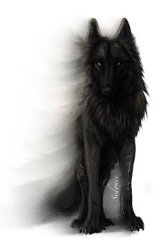 This is the bloodThirst Pack Leader. Scar, he's the most dangerous wolf ever. mess with him say good bye to your little wolf life ): He attacked my sister one day. never going to forget that ; Anime Wolf, Wolf Tattoos, Wolf Spirit, Spirit Animal, Fantasy Wolf, Fantasy Art, Animal Drawings, Cool Drawings, Arte Obscura