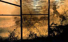 Beautiful photografy from the norwegian contemporary artist photographer Kristin von Hirsch. To see the whole collection and order, go to http://artbyhand.no/butikk/billedkunst/kristin-von-hirsch