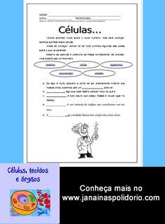 14 páginas, mais gabarito de atividades prontas para imprimir e usar. Confira no http://www.janainaspolidorio.com/celulas-tecidos-e-orgaos.html