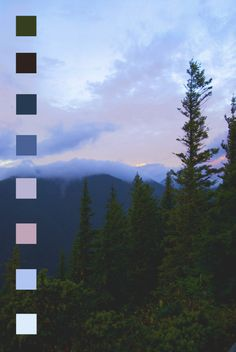 """northwezt: """" Here's another color palette because I refuse to do my homework Olympic National Park Sunrise, WA """" Colour Pallete, Colour Schemes, Color Patterns, Color Palettes, Nature Rose, Sunrise Colors, Color Swatches, Pantone Color, Aesthetic Wallpapers"""