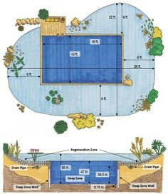 can fit comfortably in my yard with tweaking ( approx. 3 fence panels including filter zone)This can fit comfortably in my yard with tweaking ( approx. Swimming Pool Pond, Natural Swimming Ponds, Natural Pond, Pond Construction, Swimming Pool Construction, Piscine Diy, Diy Pool, Cool Pools, Pool Houses