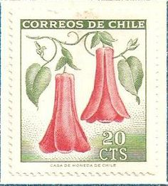 Our National Flower Copihue Two Of A Kind, Postage Stamp Art, Little Flowers, Stamp Collecting, Mail Art, South America, History, Illustration, Artwork