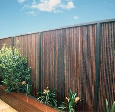 Natural Privacy Fences, Bamboo Privacy Fence, Outdoor Privacy, Backyard Privacy, Backyard Fences, Backyard Projects, Backyard Landscaping, Bamboo Fencing Ideas, Bamboo Ideas