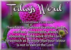 1 Corinthians 15:58 KJV
