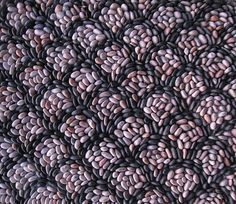 The tight repeat pattern of a pebble mosaic in two contrasting colors. Very effective.