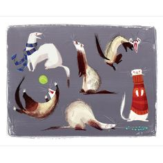 Ferrets! Print at shanalogic.com