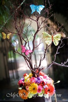 Manzanita Branch with multiple colors at the bottom and Butterflies on branches, butterfly idea, butterfly wedding theme #butterflywedding #butterflydecorations