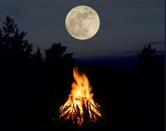 Moon and Fire Full Moon Eclipse, Full Moon Tonight, Really Cool Photos, Ayurvedic Oil, Blue Harvest, Good Night Moon, Moon Magic, White Magic, Super Moon