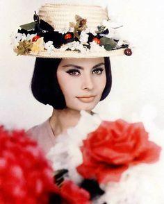 a young sophia loren Sophia Loren, Hollywood Stars, Classic Hollywood, Old Hollywood, Hollywood Glamour, Divas, Marlene Dietrich, Brigitte Bardot, Most Beautiful Women