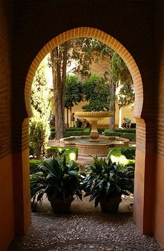 Discover recipes, home ideas, style inspiration and other ideas to try. Patio Interior, Home Interior, Interior And Exterior, Indoor Zen Garden, Potted Olive Tree, Large Terracotta Pots, Temple Gardens, Rustic Italian, Rock Decor