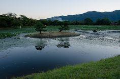 Daikaku-Ji  (Kyoto) / 旧嵯峨御所大覚寺門跡・大沢池と菊ヶ島(京都)