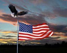 USA I Love America, God Bless America, American Pride, American Flag, Cute Slippers, United We Stand, Old Glory, Usa Flag, Eagles