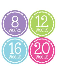 Pregnancy Baby Bump Week Stickers Style #906
