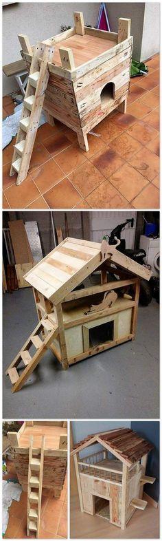 Wanna build a cat house?