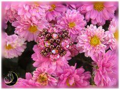 Floreada Primavera!!!  