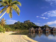 Tropics - Africa-unique lifestyle