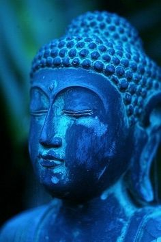 lack of meditation leaves ignorance. Know well what leads you forward and what hold you back, and choose the path that leads to wisdom. Buddha Stunning cobalt blue statue of Budhha. Azul Indigo, Bleu Indigo, Mood Indigo, Le Grand Bleu, Little Buddha, Blue Aesthetic, Something Blue, My Favorite Color, Deep Blue
