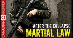 After the Collapse: Martial Law & Phases of SHTF (VIDEO)