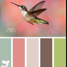 hummingbird style!