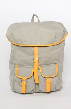 ++ the mr. daypack