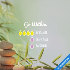 Go Within - Essential Oil Diffuser Blend