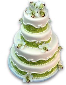 Four Tier Cake With Apple Green Bands And Cymbidium Orchids
