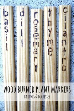 wood burned plant ma