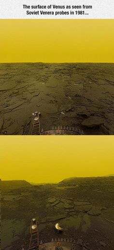 Funny pictures about Surface Of Venus. Oh, and cool pics about Surface Of Venus. Also, Surface Of Venus photos. Carl Sagan, Astronomy Science, Space And Astronomy, Hubble Space, Space Telescope, Space Shuttle, Telescope Images, Planetary Science, Cosmos