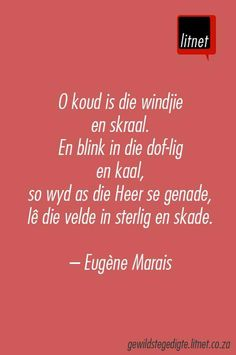 eugene marais Afrikaanse Quotes, South Africa, African, Writing Quotes, Language, Poetry, Secret Life, Cry, Wise Words