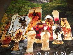 Bình thủy tinh ngâm sâm rượu Hàn Quốc chất lượng cao, đẹp, mà các quý ông mê ngay. 0984 957 602