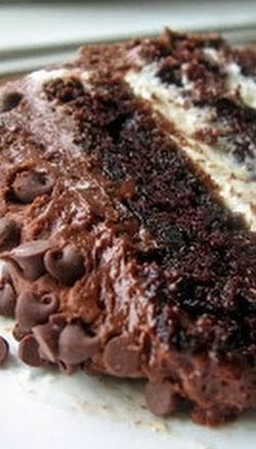 Chocolate Layer Cake with Cream Cheese Filling & Chocolate Buttercream - delicious looking cake
