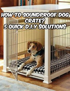 How To Soundproof Dog Crate 5 Solutions That Really Work Dog