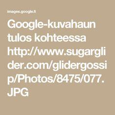 Google-kuvahaun tulos kohteessa http://www.sugarglider.com/glidergossip/Photos/8475/077.JPG