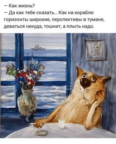 Clever Quotes, Funny Quotes, Russian Jokes, Funny Expressions, Funny Phrases, Blue Cats, Adult Humor, Cartoon Images, Just For Laughs