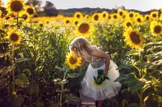Sussex County Sunflower Maze - Hudson Valley NY Photographer (9)